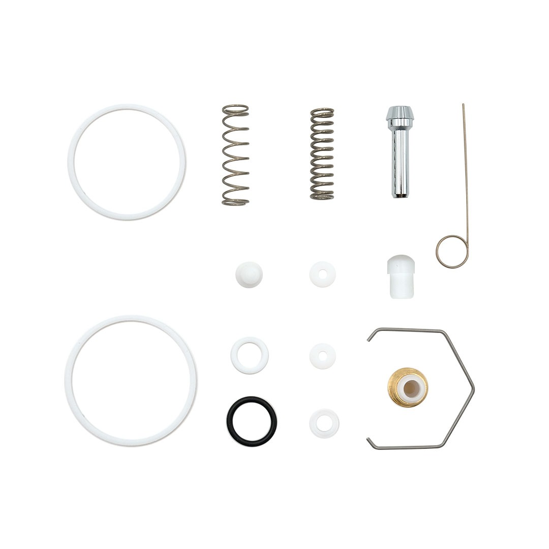 Gasket kit Carbonio